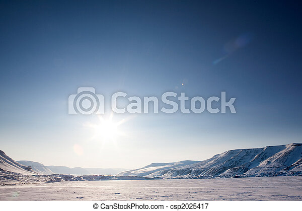 Barren Winter Landscape - csp2025417