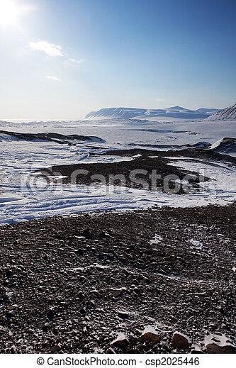 Barren Winter Landscape - csp2025446