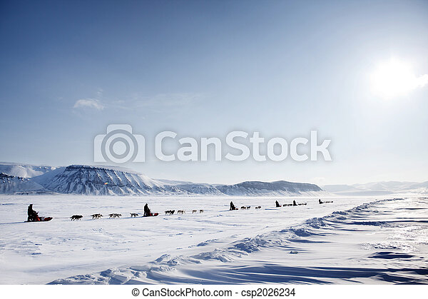 Dog Sled Expedition - csp2026234