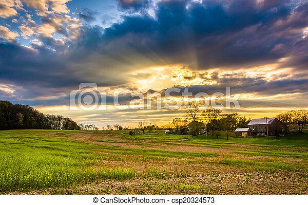 lantgård, grevskap,  över,  sky,  Pennsylvania, fält, solnedgång,  York, lantlig - csp20324573