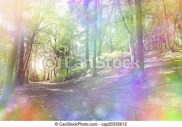 Fantasy rainbow bokeh woodland  - csp20335612
