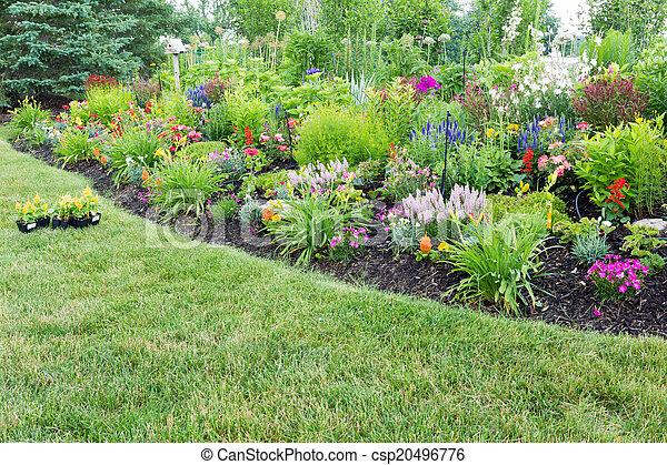 photo luxuriant parterre fleurs color fleurir celosia image images photo libre de. Black Bedroom Furniture Sets. Home Design Ideas