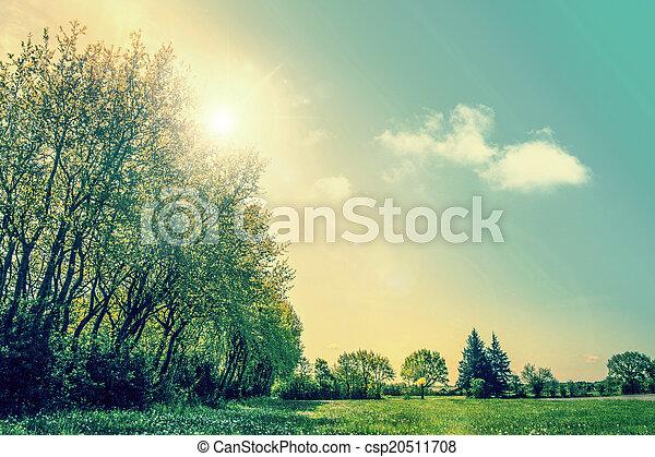 Sunrise on a countryside landscape