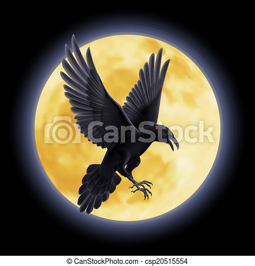 Black raven - csp20515554