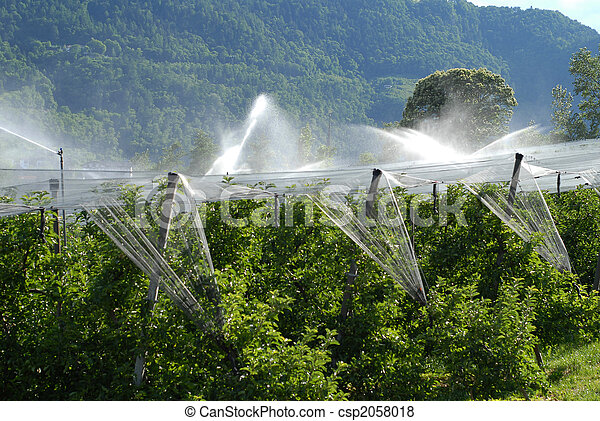 landwirtschaft - csp2058018