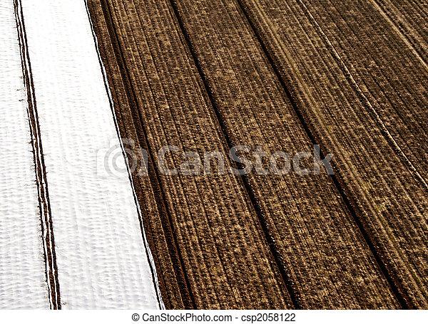 Aerial Pictrue of agriculture  - csp2058122