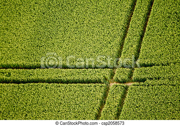 Cornfield, Aerial Photo - csp2058573