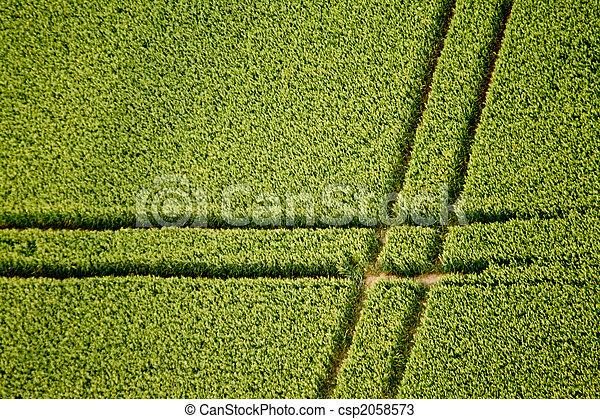 Cornfield, Aerial Photo - csp2058573