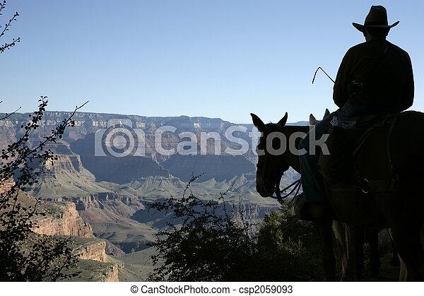 Mule rider - csp2059093