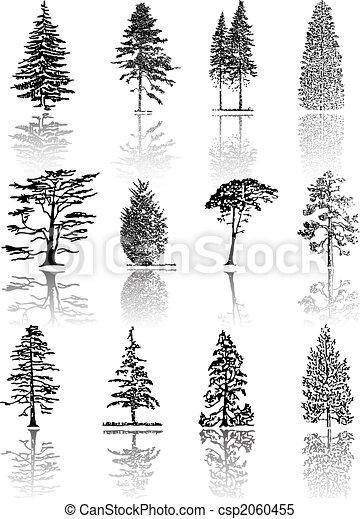 Trees - csp2060455