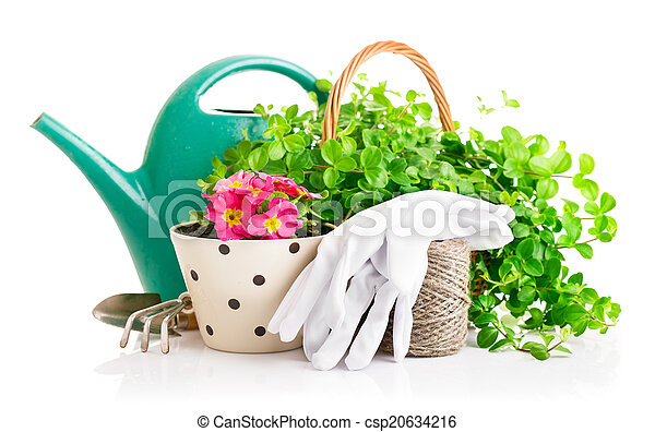 flowers and green plants for gardening with garden tools - csp20634216