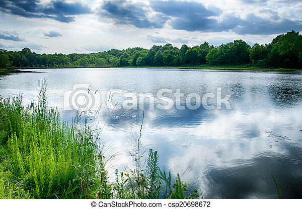 green plants by the remote lake - csp20698672