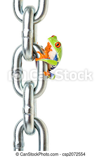 frog pondering on how to get back down - csp2072554