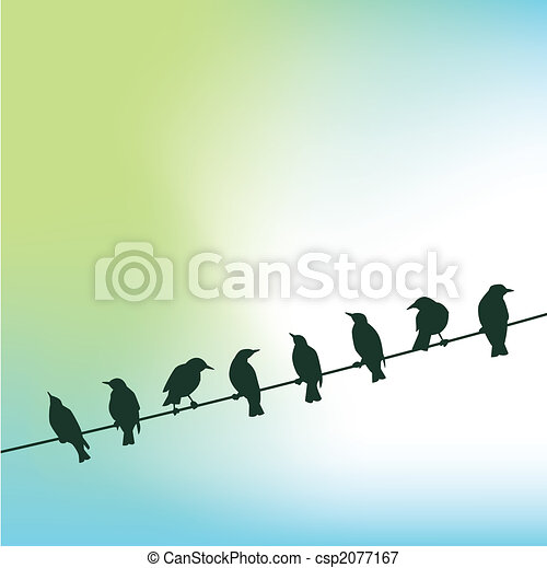 birds on a wire - csp2077167