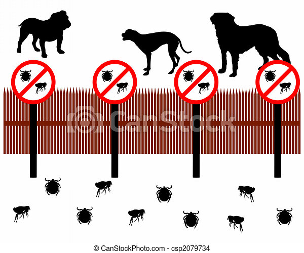 Dogs behind a fence to protect against ticks and fleas - csp2079734