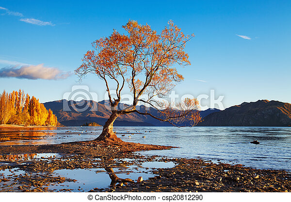Lake Wanaka, New Zealand - csp20812290