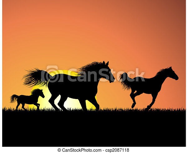 horse on sunset background - csp2087118