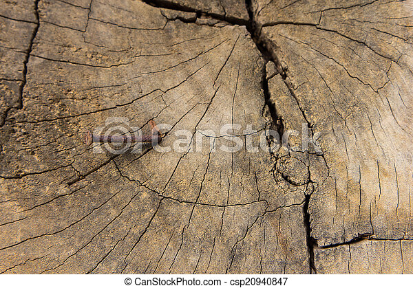 Old wood texture, vintage natural