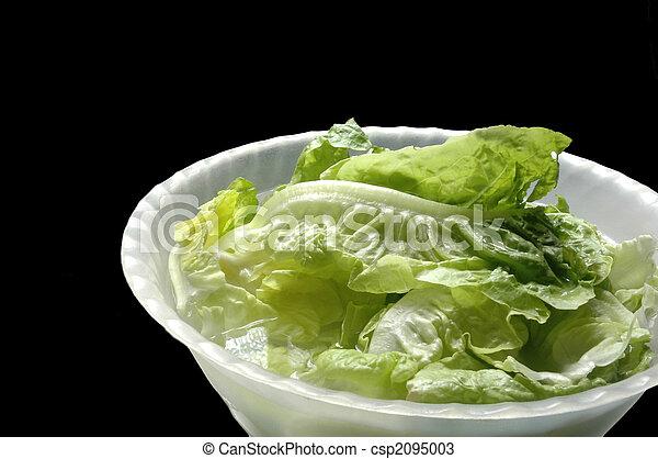 lettuce - csp2095003