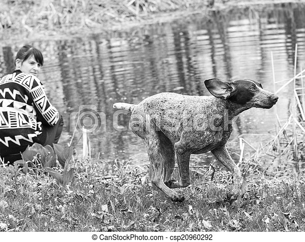 dog and owner by the water
