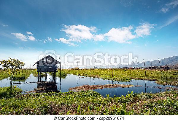 Inle Lake Myanmar, Shan state. Floating gardens of rural Intha - csp20961674