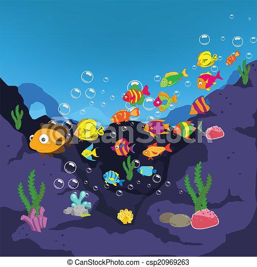 Pics Photos Under Sea Fish Cool Pictures Hd Wallpaper Under Sea Fish