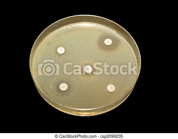 Antibiotic discs - csp2099235