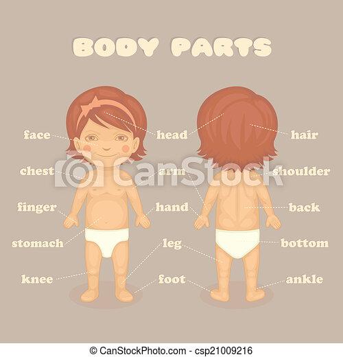 parts - stock illustration, royalty free illustrations, stock clip art ...