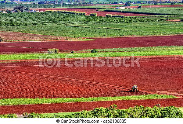 Farming red earth - csp2106835