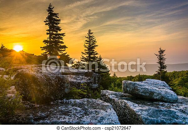 Sunrise at Bear Rocks Preserve, in Dolly  Sods Wilderness, Monon - csp21072647