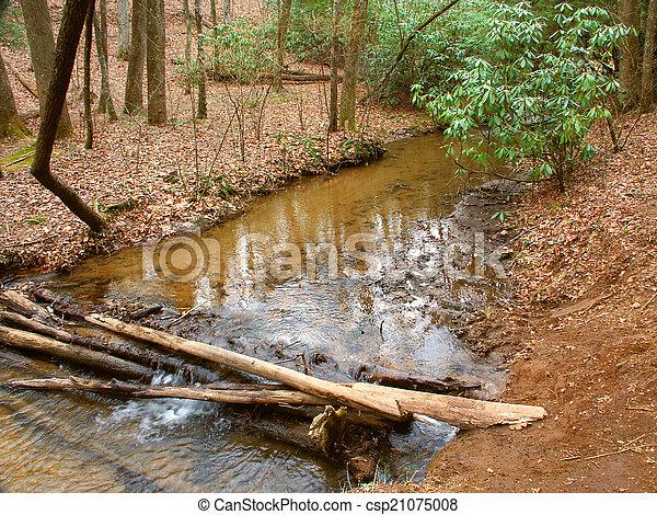 Appalachian Trail in Georgia - csp21075008