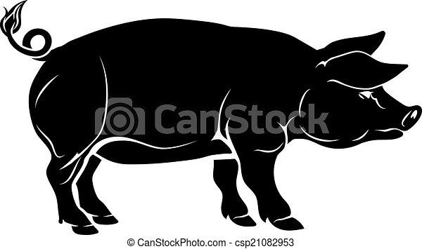Pig illustration - csp21082953