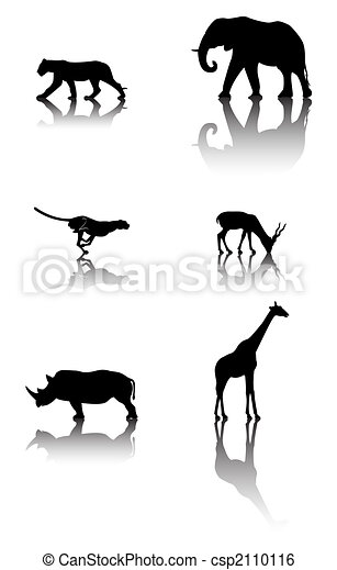 Set of wildlife animals - csp2110116