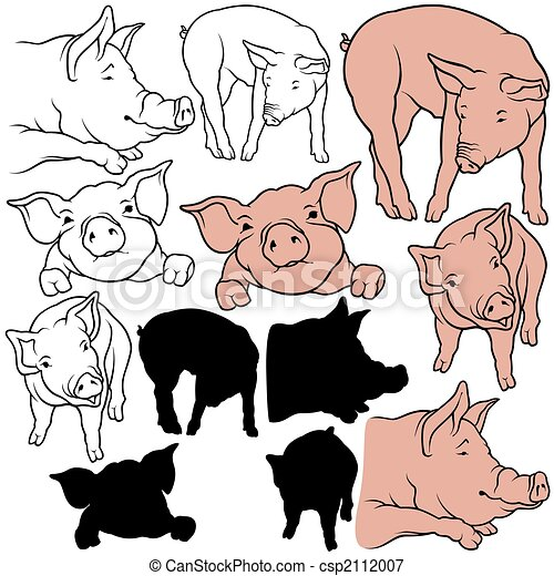 Pig Set - csp2112007