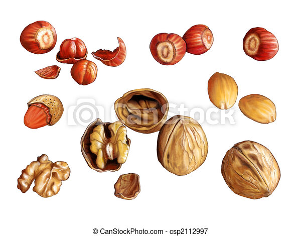 nuts in a tree clip art