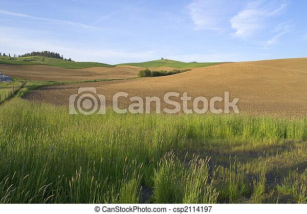 Rolling Farmland - csp2114197