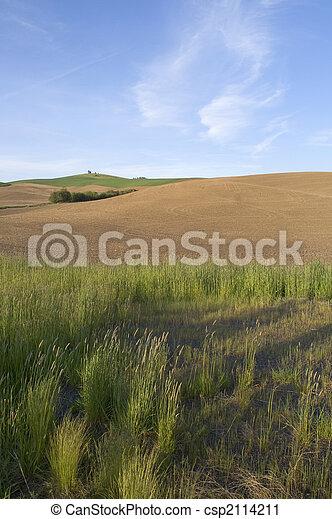 Rolling Farmland - csp2114211