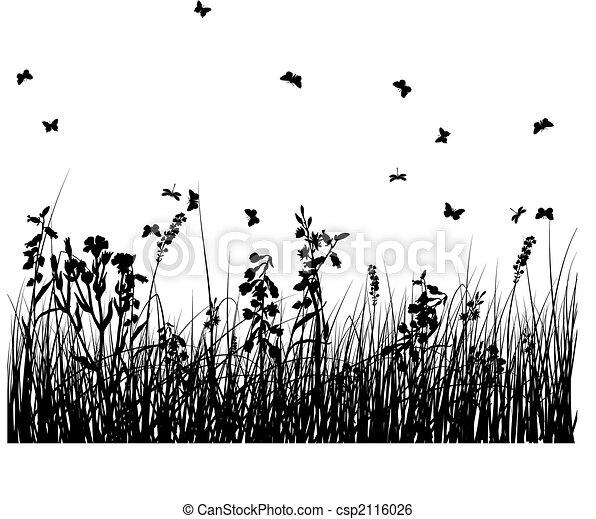 grass silhouettes - csp2116026
