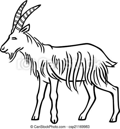 Billy Goat - csp21169983