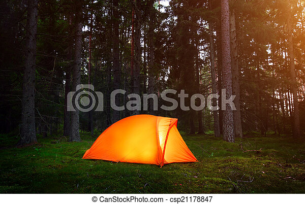Camping in the Forest - csp21178847