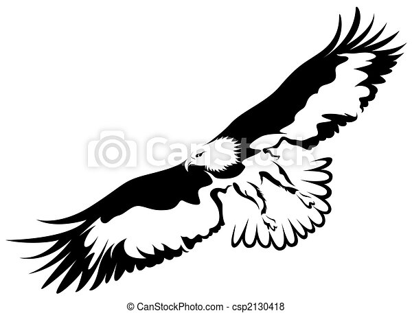 Eagle Open Wings Drawing an Eagle With Wings Open