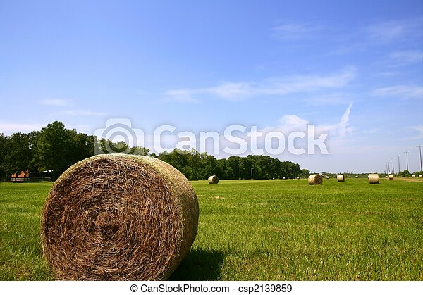 Golden Straw Hay Bales in american countryside - csp2139859