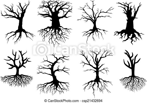 Arboles Secos Vectores Vector Descubierto árbol
