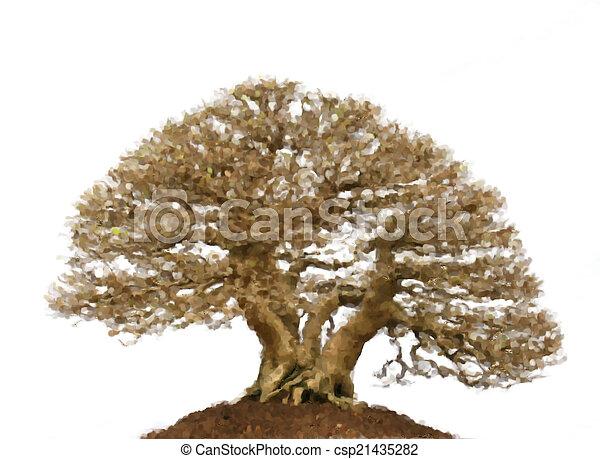 Images de bonsai peinture huile arbre pin huile - Bonsai arbre prix ...