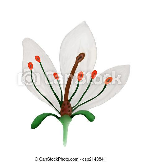 clipart de anatomie fleur illustration de a coup deux fleur csp2143841 recherchez. Black Bedroom Furniture Sets. Home Design Ideas