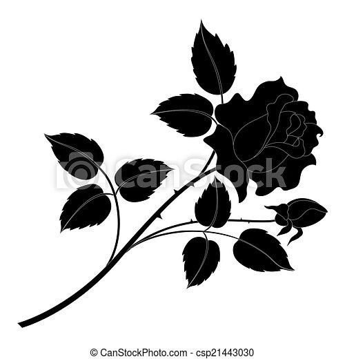 Fleur Dessin Rose Et Noir Idee D Image De Fleur