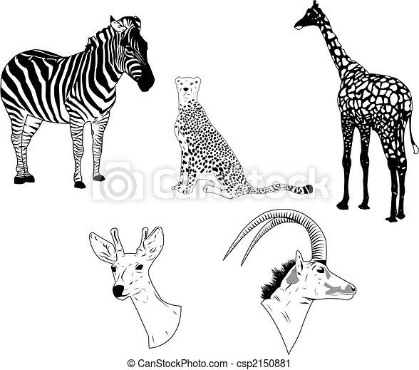Savanna Animals - csp2150881