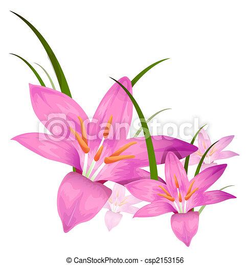 purple flower - csp2153156