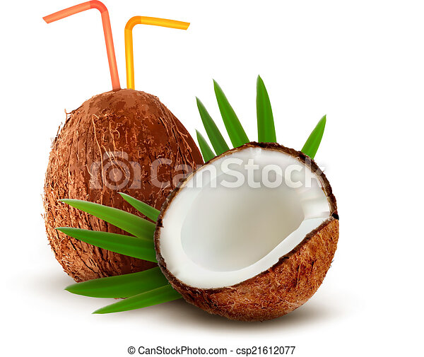 Coconut with leaves. Vector.  - csp21612077