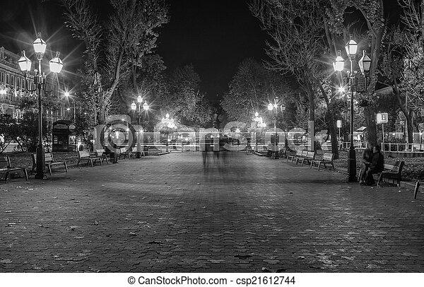 Lviv city night landscape